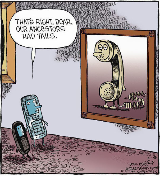 That's Right, dear, Our ancestors had tails
