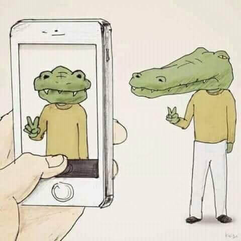 28 Funny Illustrations Of Living As a Crocodile