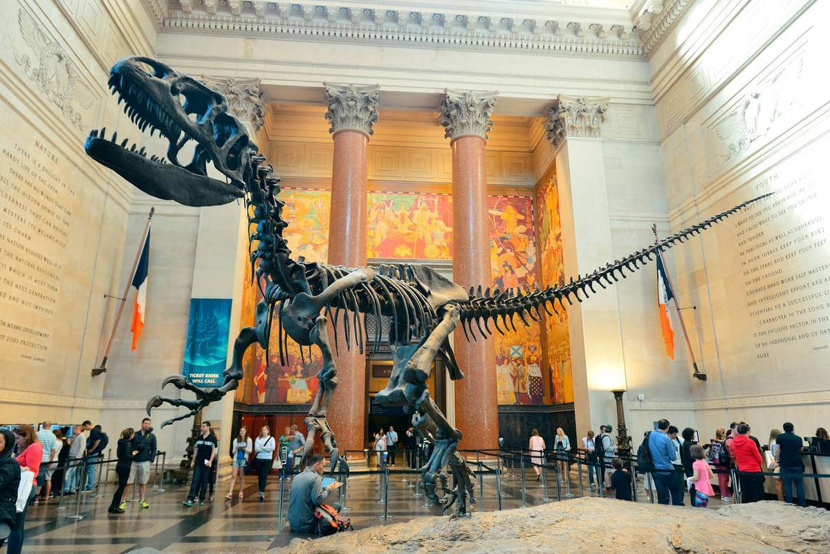 American Museum of Natural History Things to do in NYC