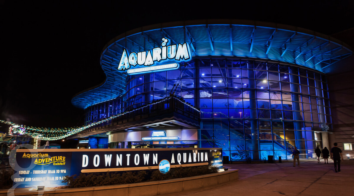 Downtown Aquarium Things to do in Denver