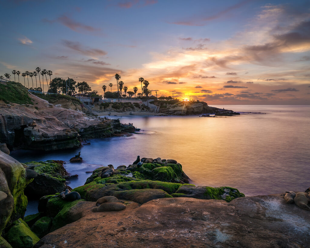 La Jolla Shores Things to do in San Diego