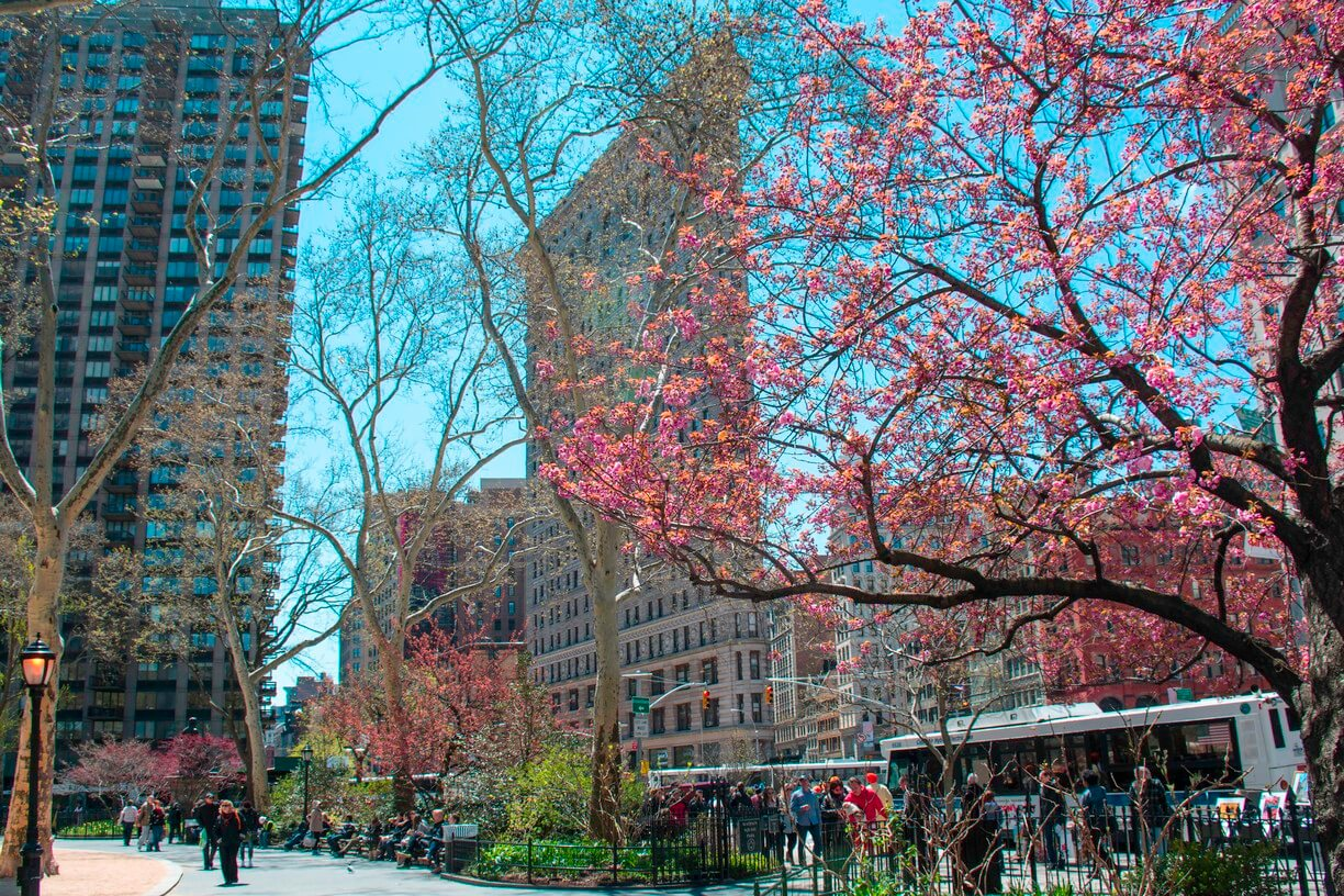 Madison Square Park Things to do in NYC