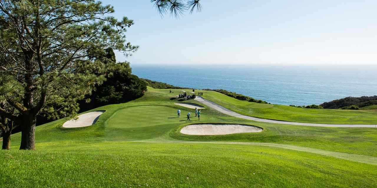 Torrey Pines Golf Course Things to do in San Diego