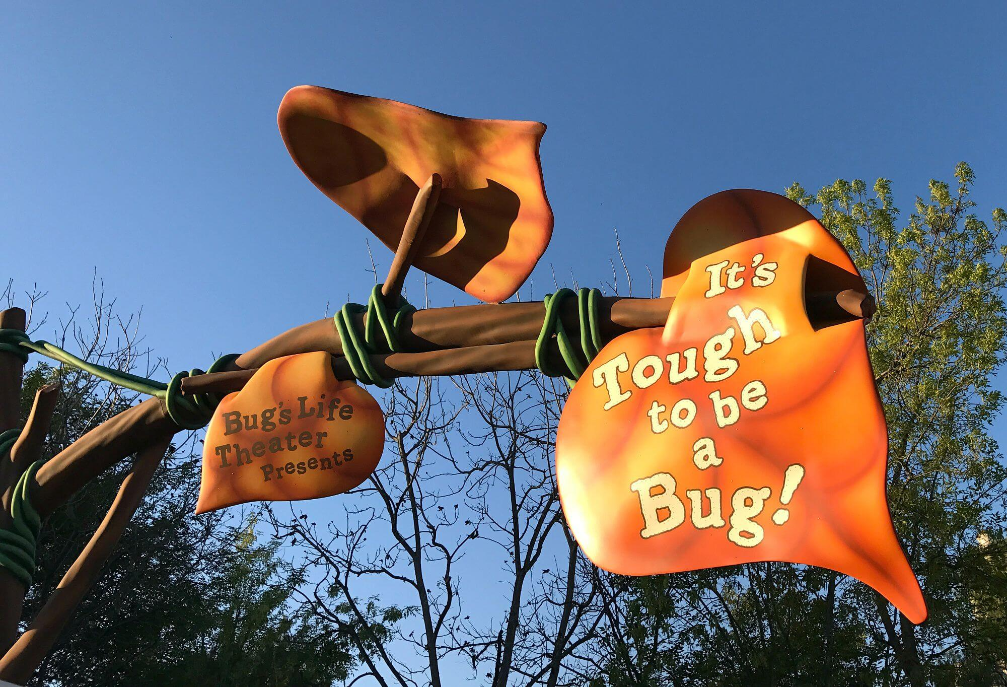 bug 4d-movie Things to do in disneyland