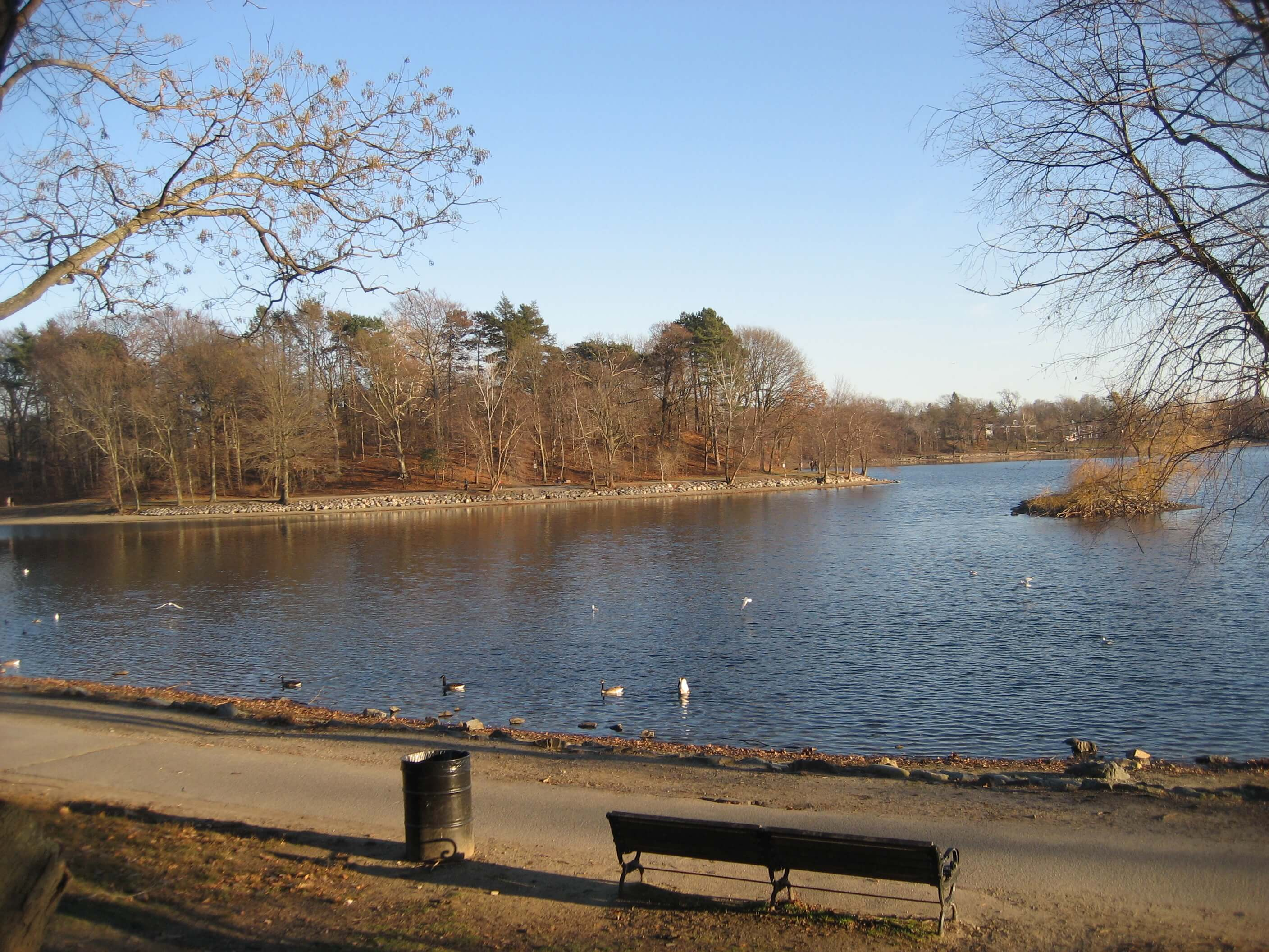 jamaica pond Things to do in Boston