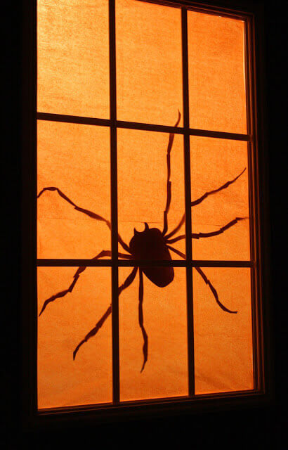 Spooky spider silhouette.