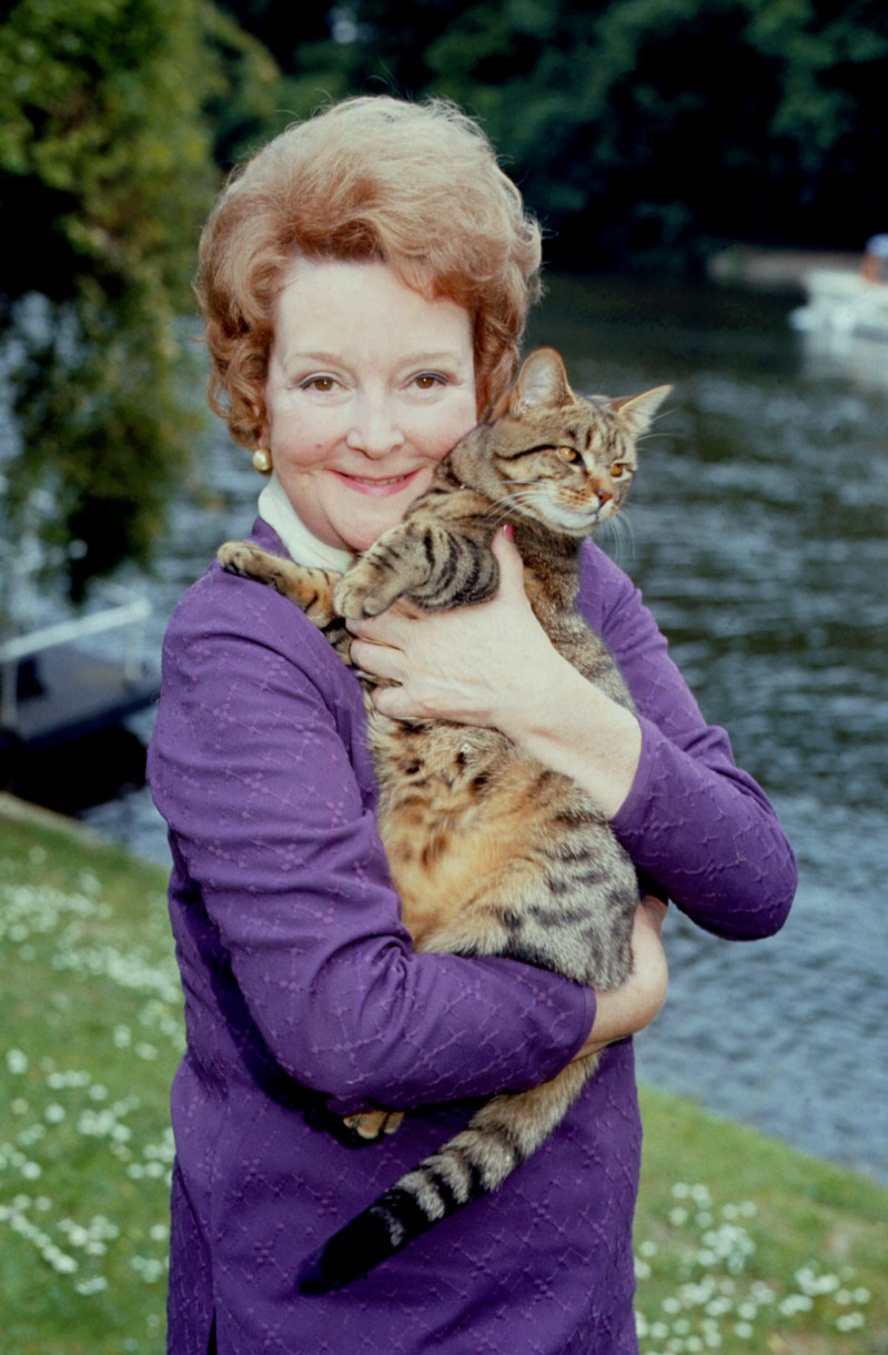BERYL REID'S CAT ($1.8 MILLION USD) | World's Richest Animals And Pets Ever