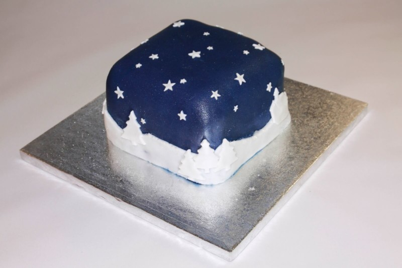 christmas cake ideas midnight