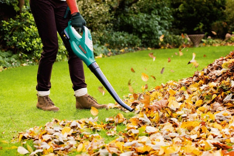 Leaf blowers Best Garden Tools and Accessories