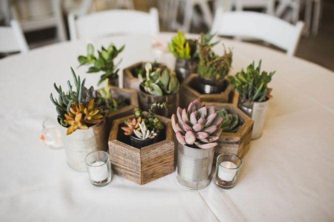 Succulent Centerpieces in Recycled Planters Wedding Centerpieces
